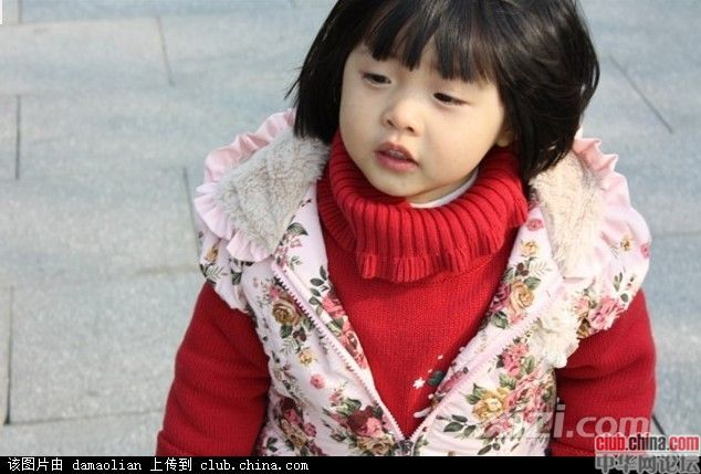 佛山小悦悦的最后一眼 惠东窗口 惠州 西子论坛 powered 高清图片